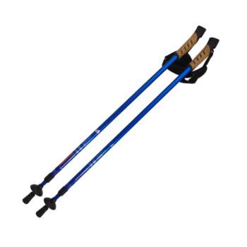 Pohodne palice dvosekcijske-ANTISHOCK za nordijsko hojo – 00214